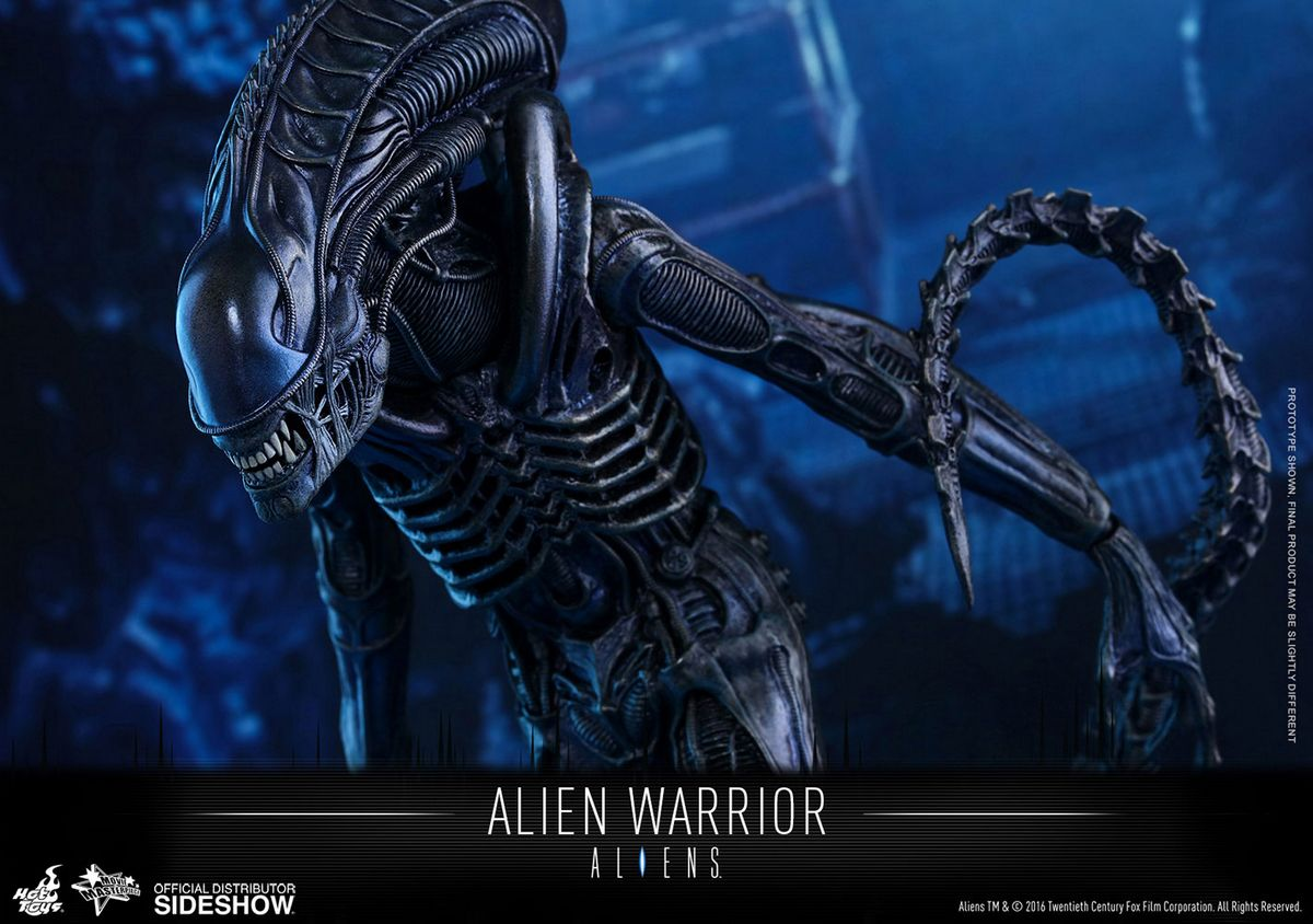 Alien Photo: Alien Warrior 1/6 Scale Action Figure