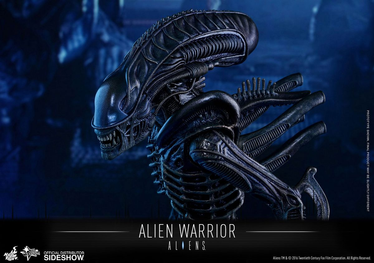 Aliens Hot Toys Alien Warrior 1 6 Scale Action Figure