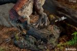 dinosauria-ceratosaurus-sideshow-collectibles-statue9