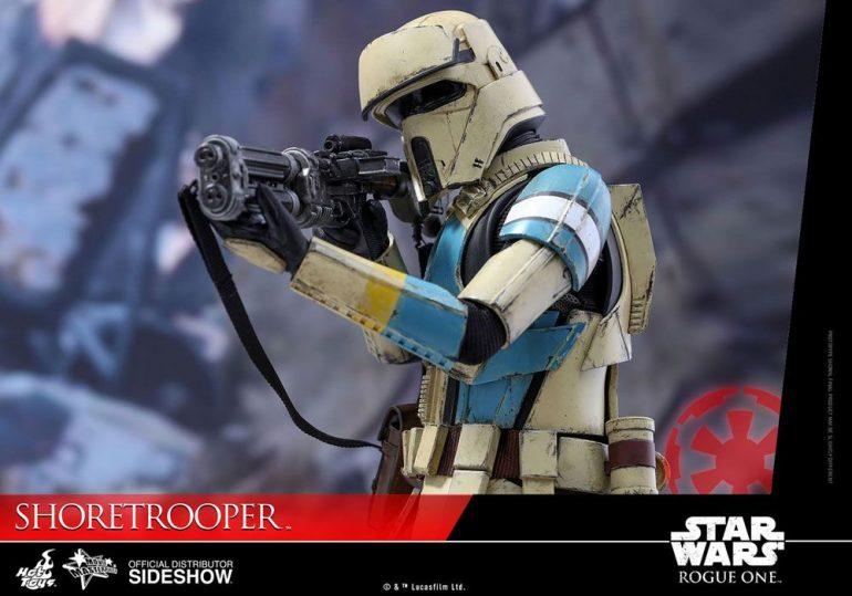 Shoretrooper Hot Toys Action Figure